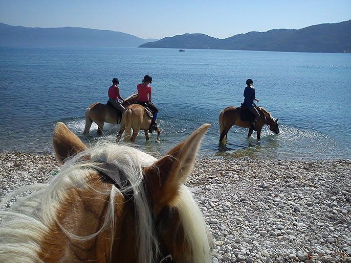 kefalonia horse riding 07