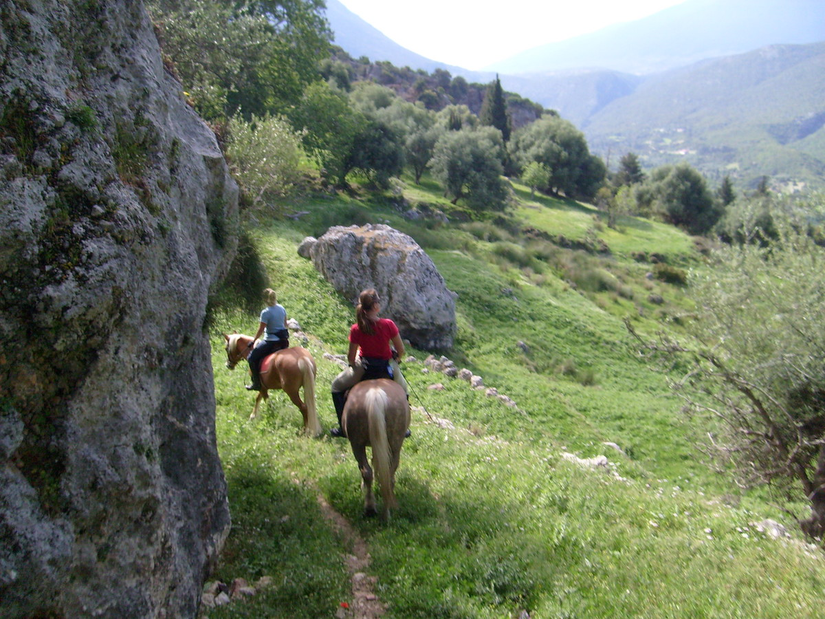 Kefalonia Horse Riding - Bavarian Horse Riding Stables Sami Kefalonia - Kefalonia Outdoor Activities - Horse riding Kefalonia - Kefalonia Horse Riding in Sami Kefalonia - Bavarian Horse Riding Stables Kefalonia